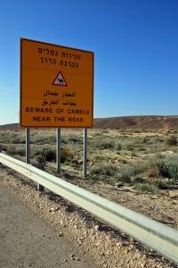 052_Izrael_2016_Negev_desert